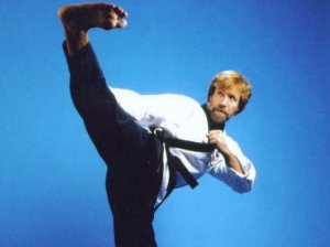 roundhouse-kick-chuck-norris